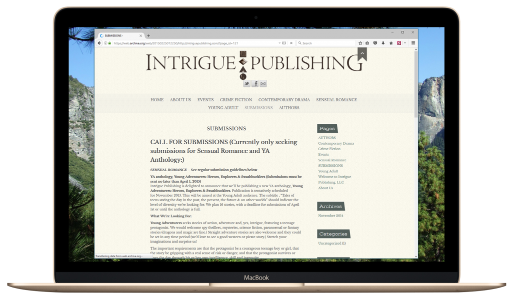 Inner Geek Designs Web Design Case Study Intrigue Publishing Old Website 02
